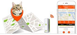 weenect balise GPS chats